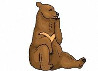 Malvorlagen Bären Kostenlos Ausdrucken