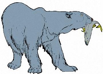 Eisbär Malvorlagen Kostenlos