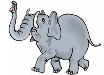 Elefanten Ausmalbilder Fur Kinder