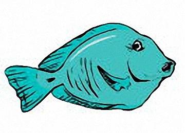 Malvorlagen Für Kinder Fische