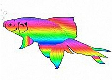 vorlage fisch kommunion