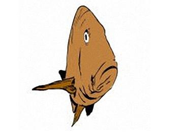 Ausmalbilder Erwachsene Fische