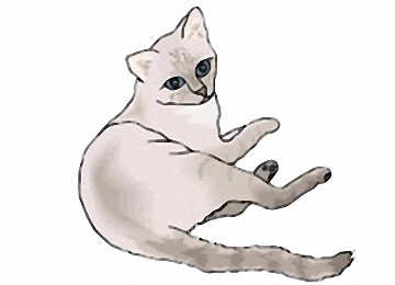 Kostenlos katze ausmalbilder Ausmalbilder Katze