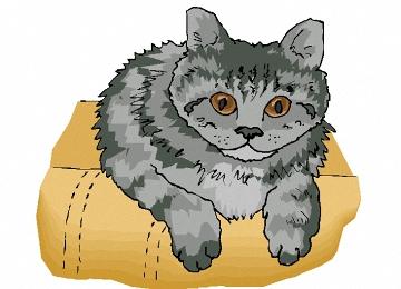 Katzenkopf Ausmalbilder Kostenlos