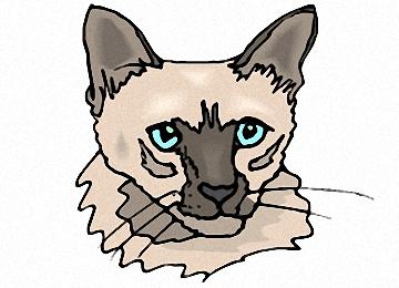 Katzenkopf Vorlage
