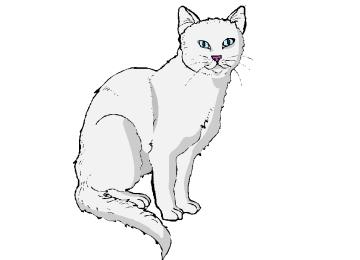 Ausmalbilder Katzen Grundschule