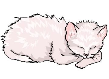 Gratis Ausmalbilder Katzen