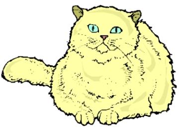 Katzenmotive Kostenlos Ausdrucken