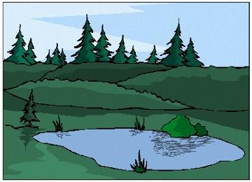 Malvorlagen Teich Im Wald