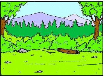 Malvorlagen Wald Kostenlos
