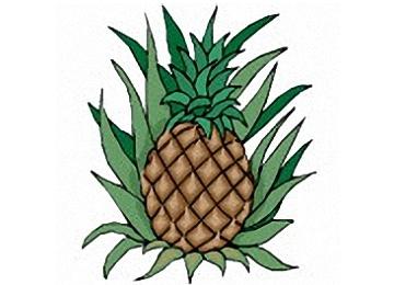 Ananas Malvorlagen Kostenlos