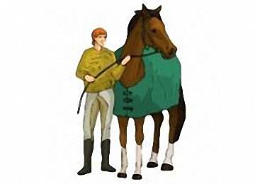 Malvorlagen Pferde Mit Pfleger