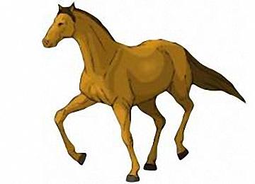 pferde zeichnungen vorlagen - vorlagen zum ausmalen gratis ausdrucken