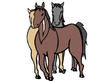 Malvorlagen Pferde Din A4