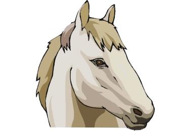 Pferdekopf Ausmalbilder Ausdrucken