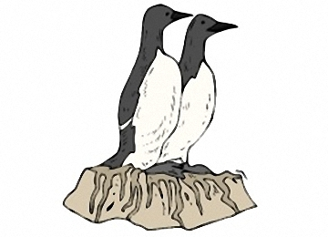 Pinguin Malvorlagen Gratis