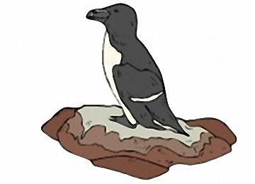 Pinguin Malvorlagen Kostenlos