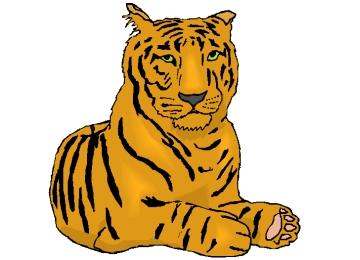 Tiger Ausmalbilder Kostenlos