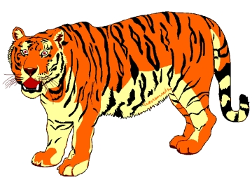 Tiger Zum Ausmalen Kostenlos Drucken