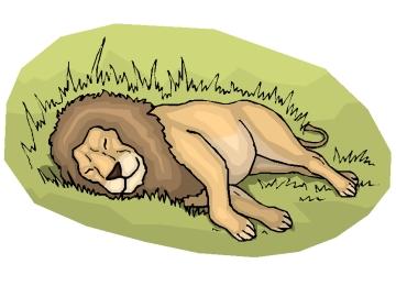 Malvorlagen Erwachsene Löwen
