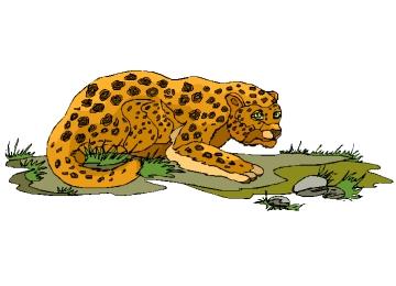 Leopard Malvorlagen Kostenlos