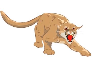 Puma Ausmalbilder Window Color