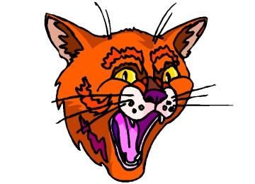 Puma Kopf Malvorlage