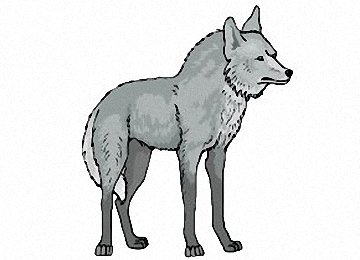 Malvorlagen Erwachsene Wölfe