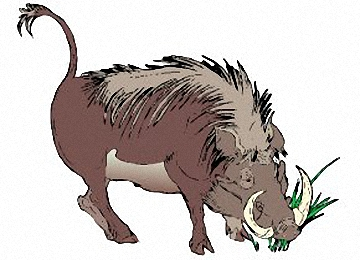 Wildschwein Malvorlagen Kostenlos