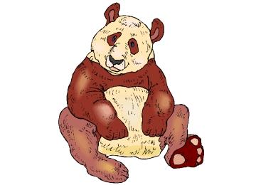 Panda Bär Ausmalbilder Für Erwachsene