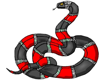Schlangen Ausmalbilder Für Erwachsene